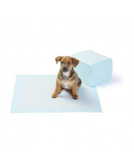 Goodies Training Pads For Puppies - Large